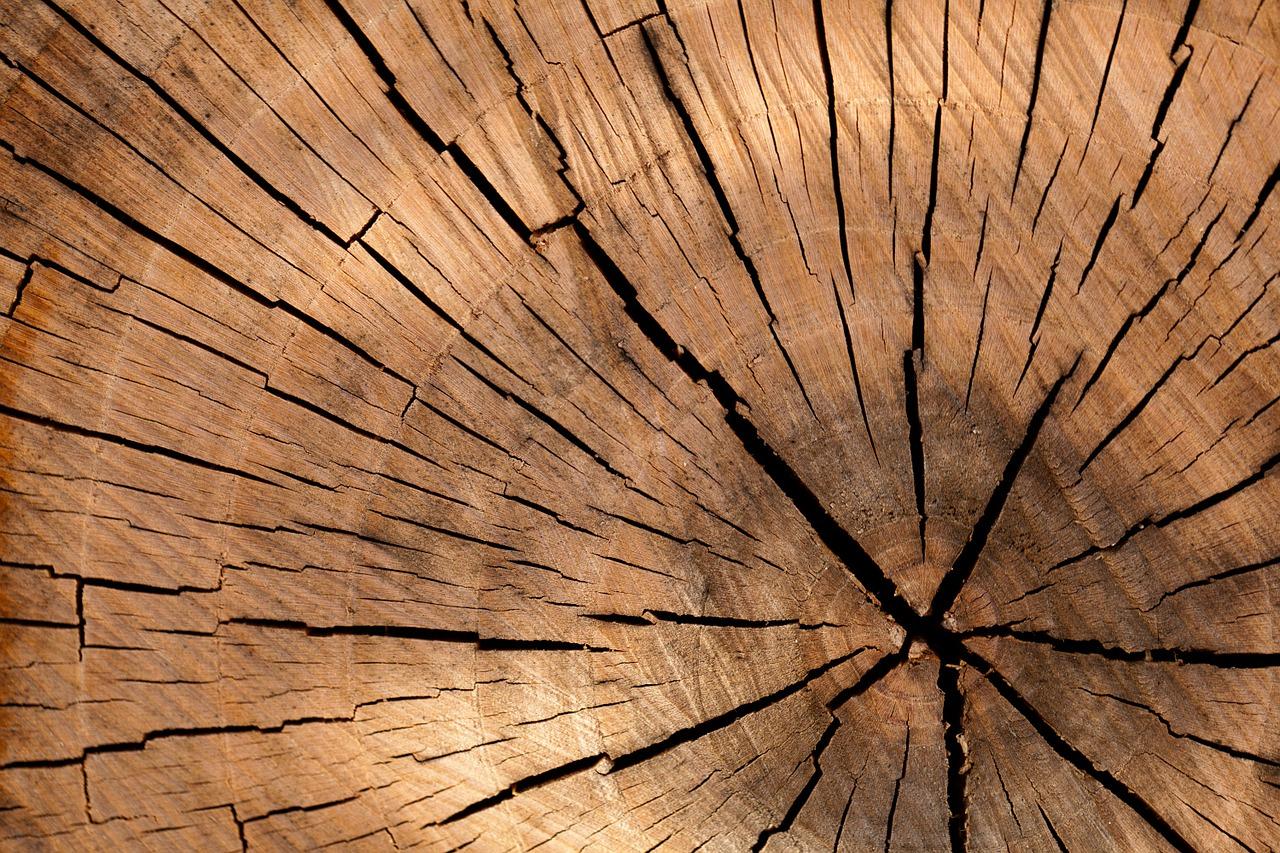 Traitement écologique du bois (Ecowood)